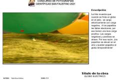 Diapositiva1-copia-6
